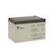 Batterie stationnaire étanche au plomb gamme ECO 12Ah 12V - bac standard