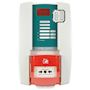 Alarme Type 4 secteur 3 boucles DM et sirène intégrée - Secours batteries