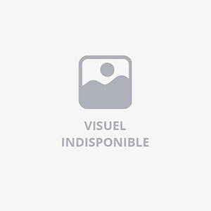 BASEL NOIR DETECTEUR 23W FLUO MAX./E27 IP54 VERRERIE GIVREE